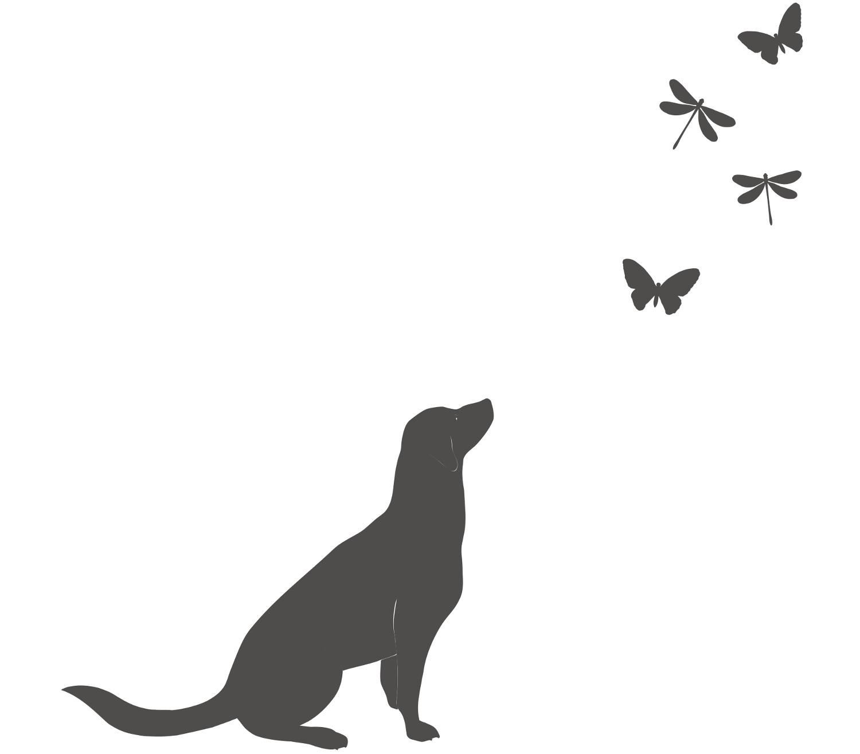Tier Wandtattoos Hund