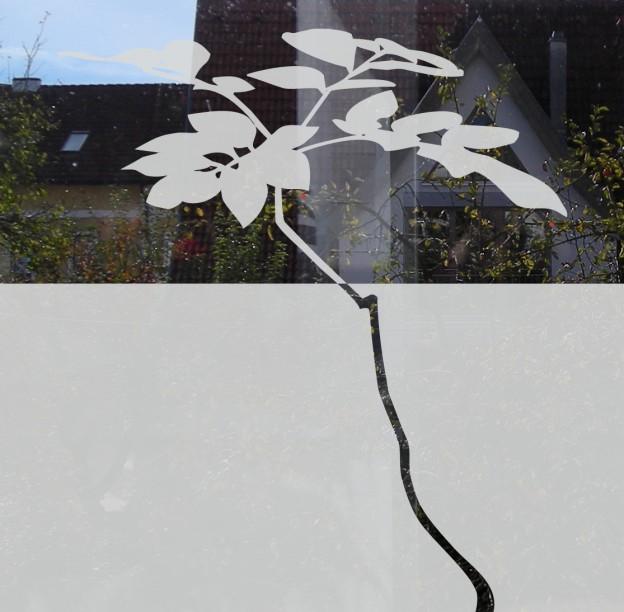 Dekorativer Sichtschutz Fur Glasflachen Ein Neues Baummotiv
